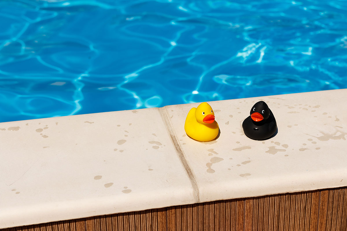 Zwei Gummienten am Pool